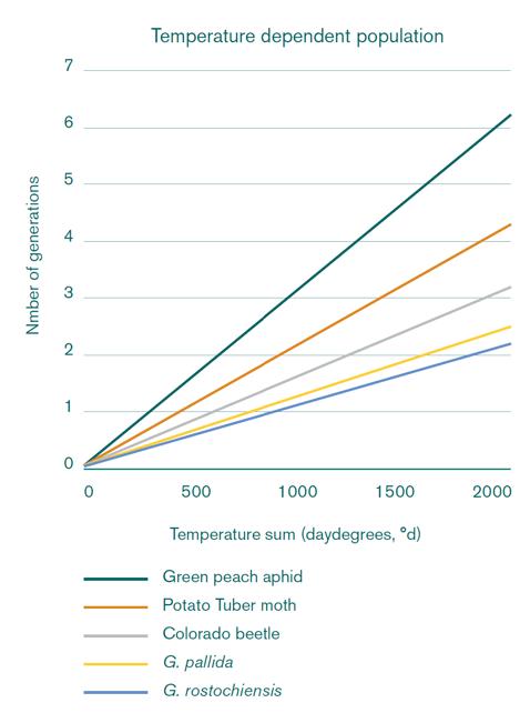 Graph with Potatoworld blog 60