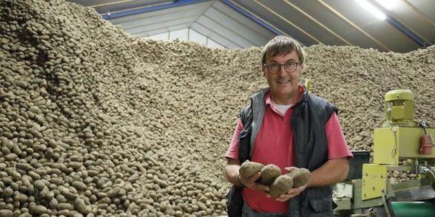 Potato storage without Chlorprofam – Bert van Putte