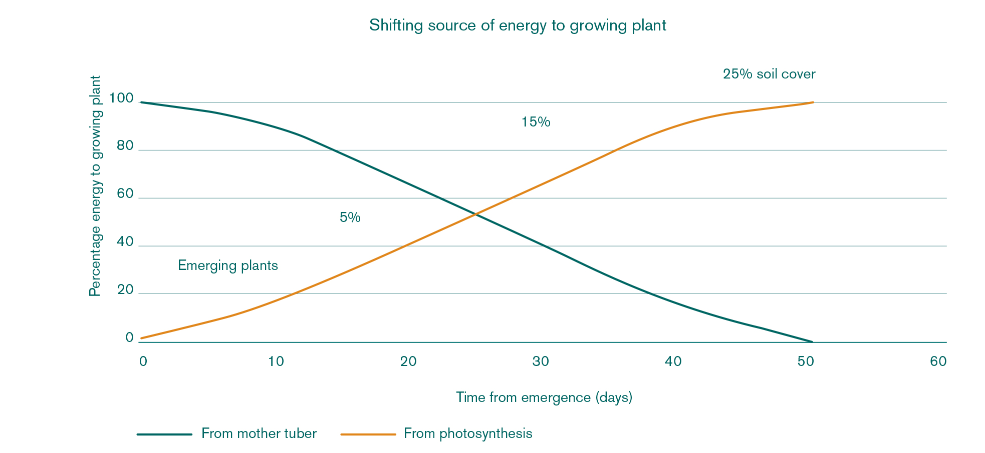 Shifting source of energy to growing plant